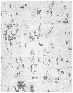 207356 Iris 10×14
