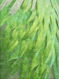 Divine Plumage – Melon