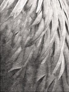 Divine Plumage – Sepia